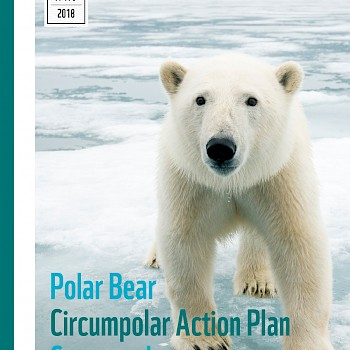/site/assets/files/1221/pages_from_wwf_-_report_-_polar_bear_scorecard-1.jpg