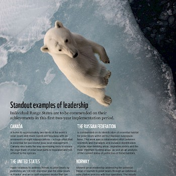 /site/assets/files/1221/pages_from_wwf_-_report_-_polar_bear_scorecard-2.jpg